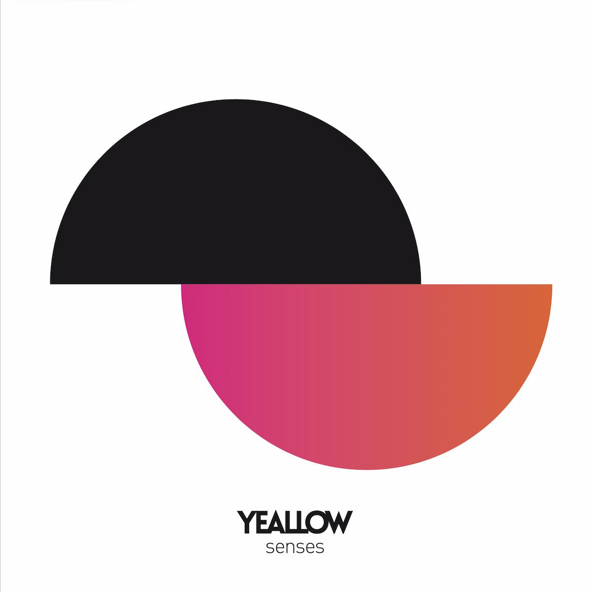 """Résultat de recherche d'images pour """"yeallow senses cd"""""""
